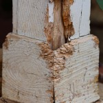 termite inspections franklin tn termite control nashville brentwood