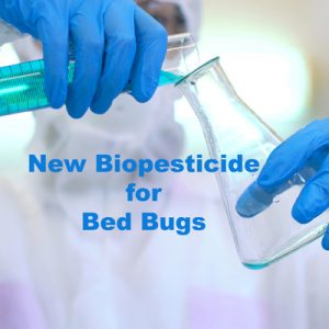 Bed Bug Control Biopesticide
